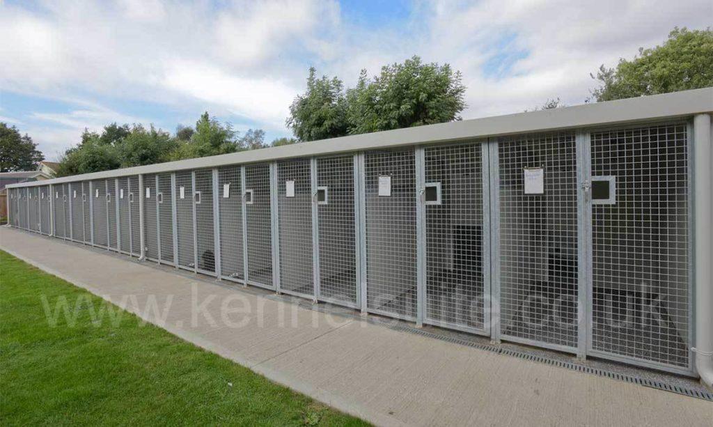 single row kennels